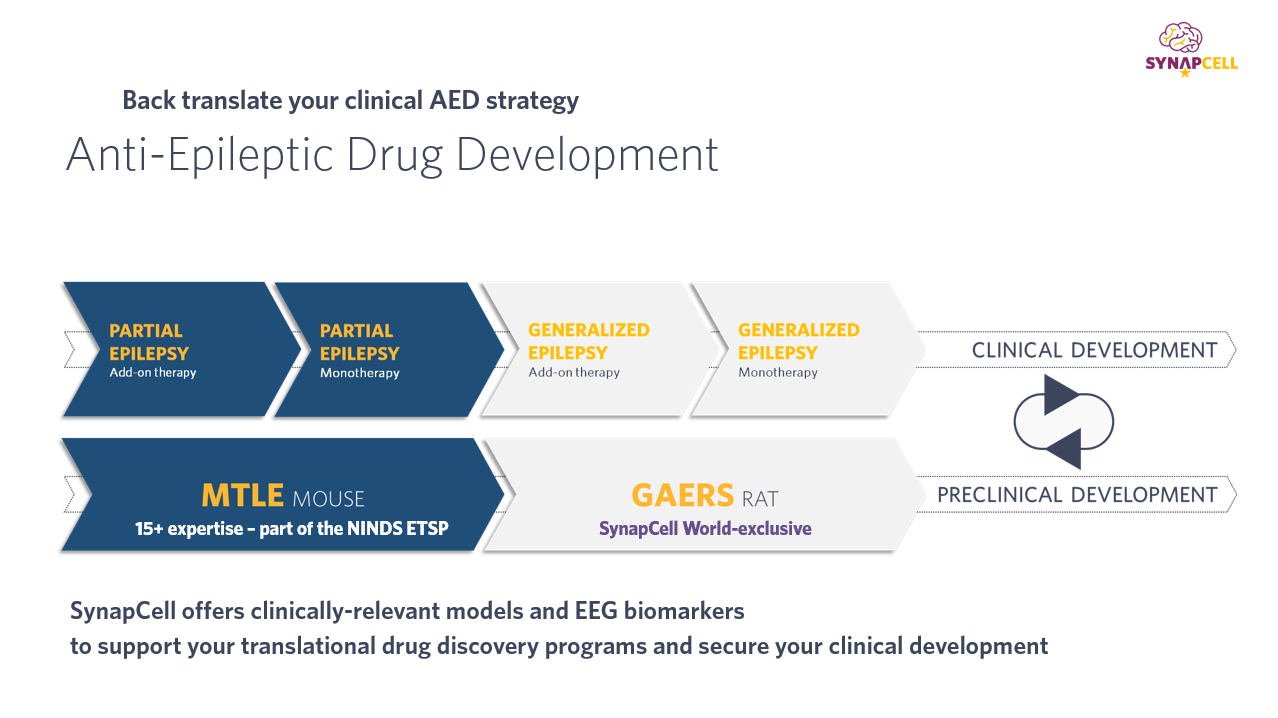 AED-strategy-SynapCell-Translational-EEG-Biomarkers