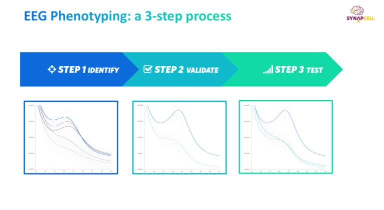 EEG Phenotyping in 3 steps
